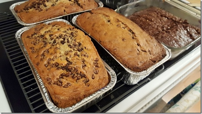chocolate chip quick bread food blog (800x450)