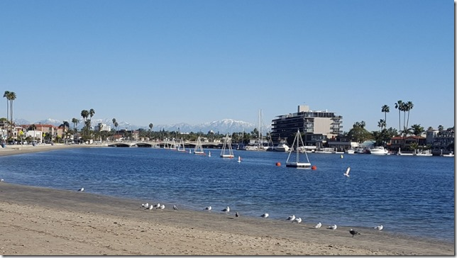 long beach running blog 4 (800x450)