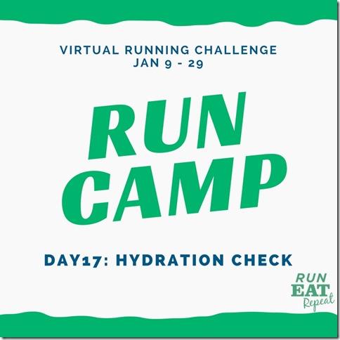 Run Camp Day 17