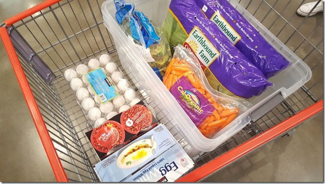 costco grocery haul (450x800)