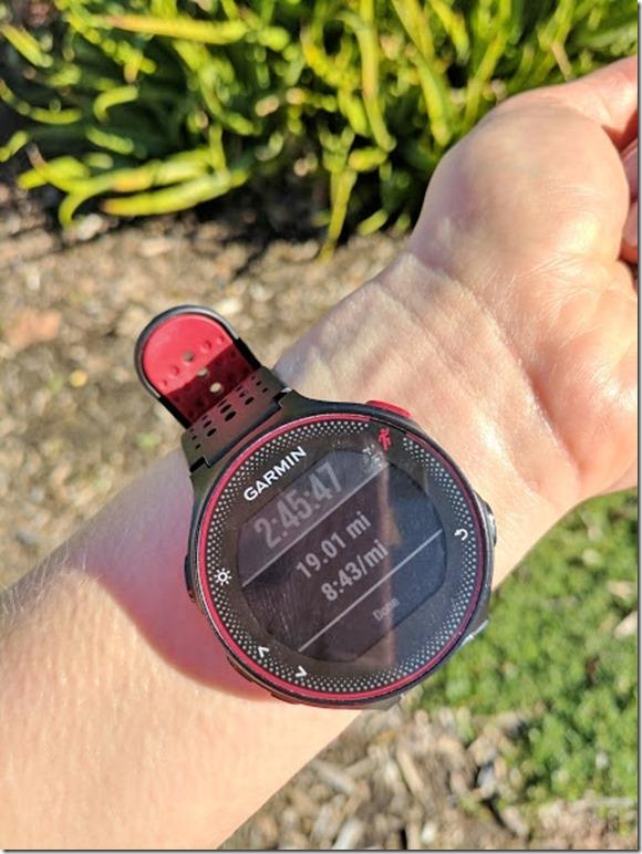 la marathon training 4 (460x613)