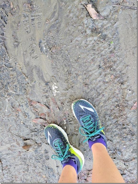 running blog jan long run report 2 (460x613)