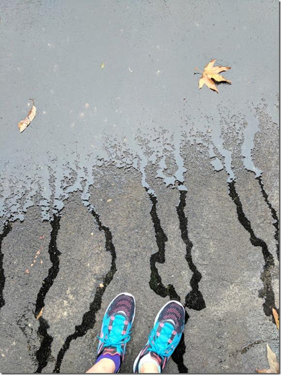 sketchers go run shoes (460x613)