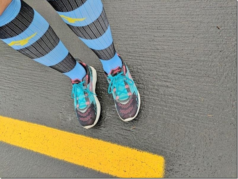 pro compression socks blue (800x600)
