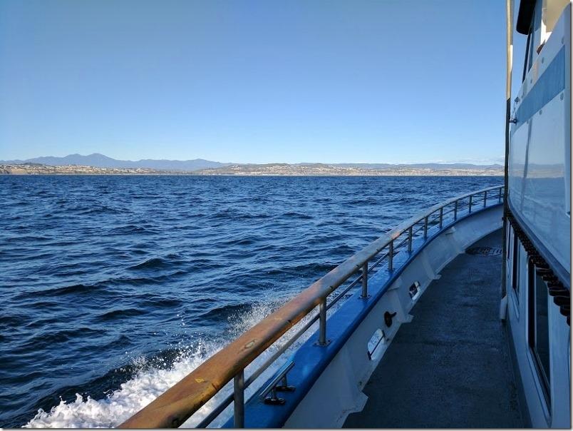 whale watching in dana point california 17 (800x600)