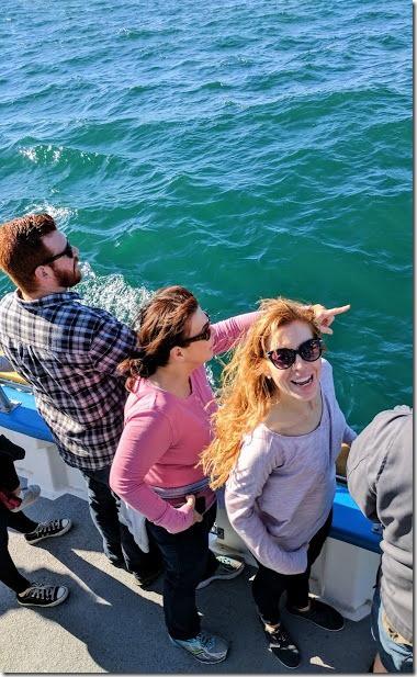 whale watching in dana point california 23 (376x613)