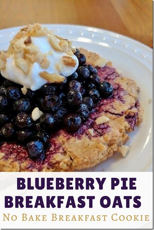 blueberry pie breakfast oat cookie (1)
