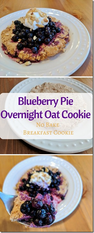 blueberry pie oatmeal cookie no bake