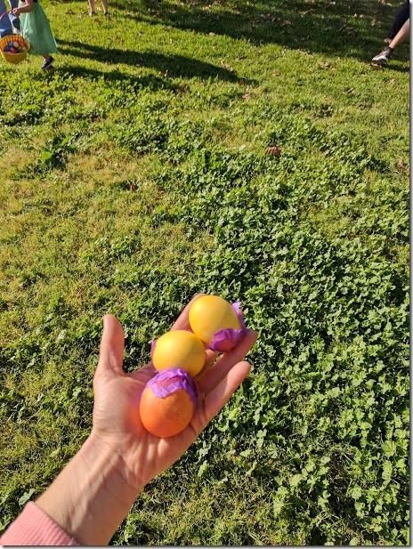 confetti egg hunt 5 (460x613)