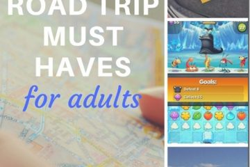 Road Trip Survival Kit for Adults