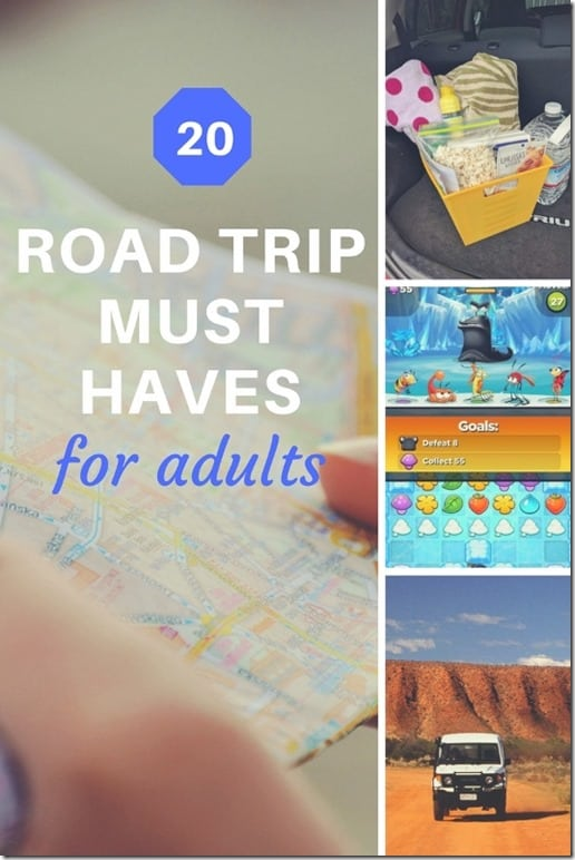 20 road trip must haves for adults (533x800)