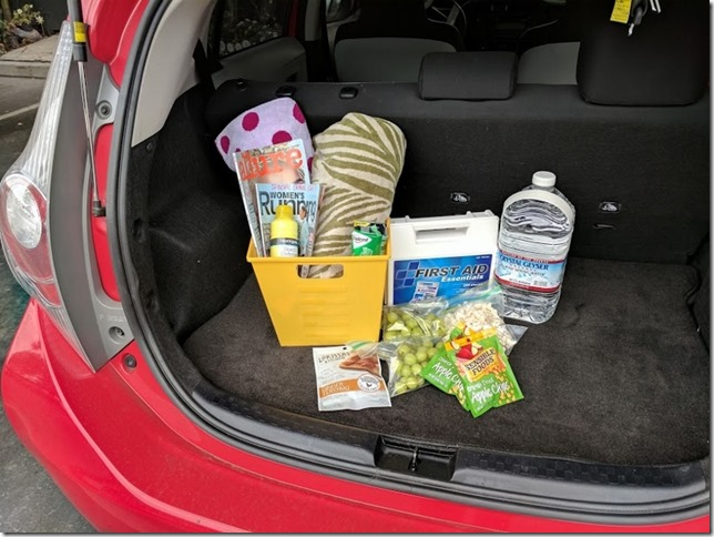 road trip survival tips for adults 13 (800x600)