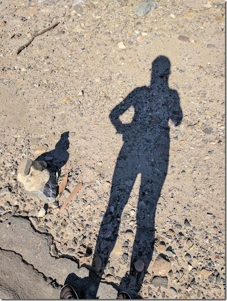running blog may (460x613)