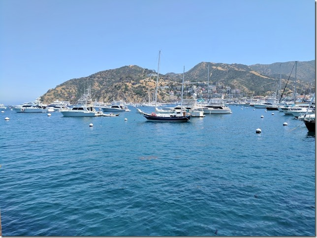 Catalina Island Tips And Blue Mint N Chip Ice Cream Run