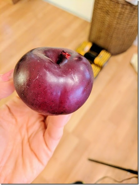plum from blue apron (442x589)
