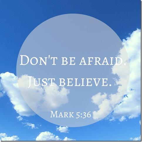 Don't be afraid. (800x800)