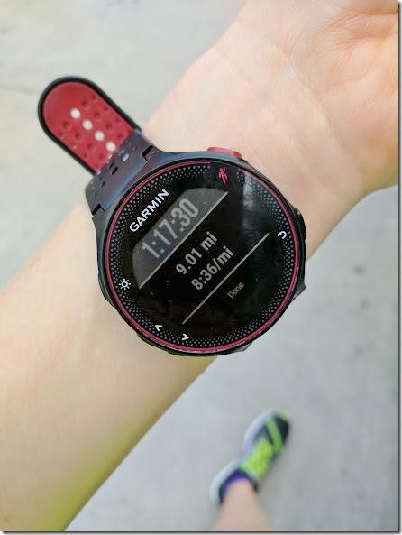 9 mile run (442x589)