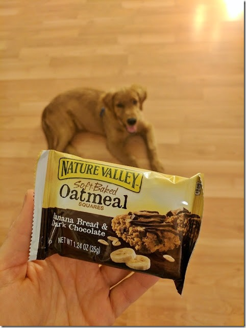 snacks and a puppy (478x638)