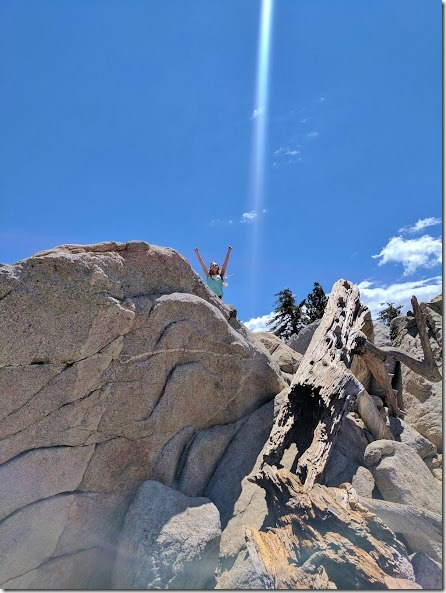 what to do in Palm Springs 13 (442x589)