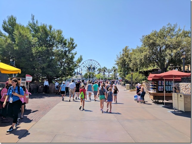 run disneyland california fun 7 (784x588)