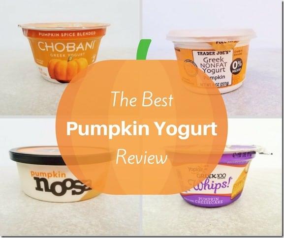 The BEST Pumpkin Yogurt Review