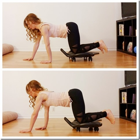 ab dolly ab workout 1 (1)