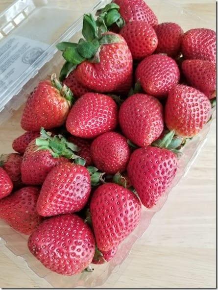 strawberry season (441x588)