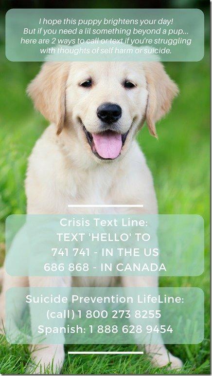 crisis text line insta story