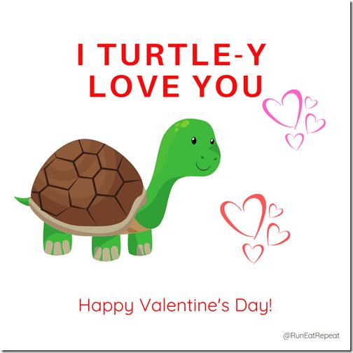 Turtle Valentine IG (1)