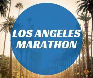 LA Marathon Recap button