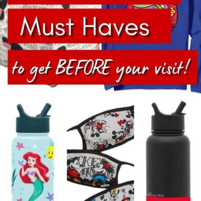 Must Know Tips BEFORE You Go To Disneyland
