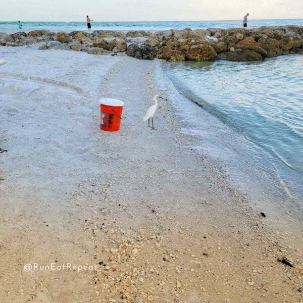 Running on Marco Island Florida Tips
