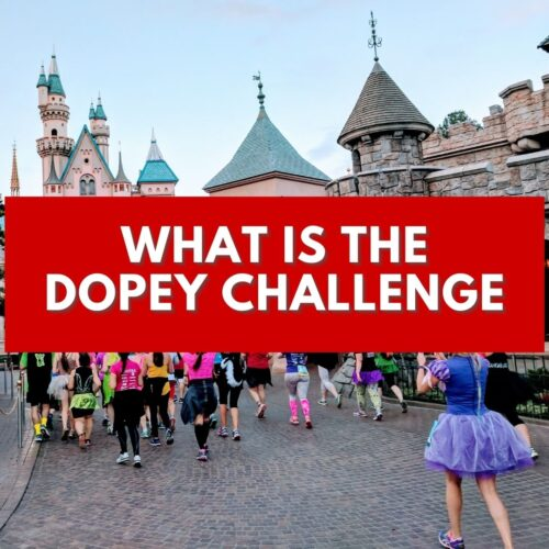 what is the Dopey Challenge